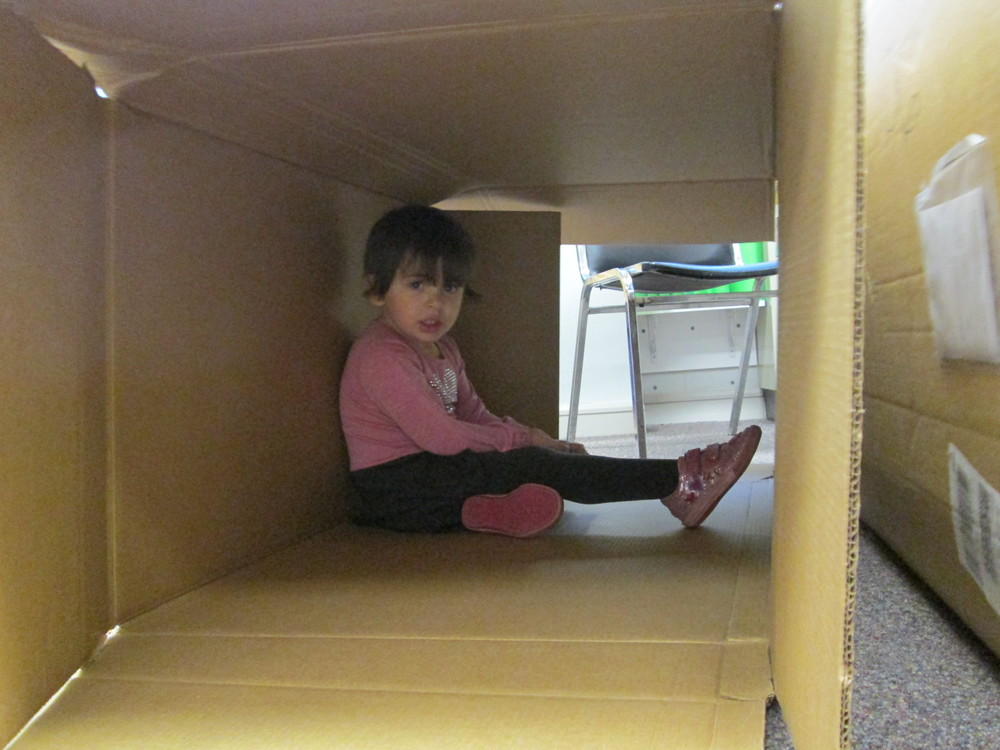 in a box!.jpg