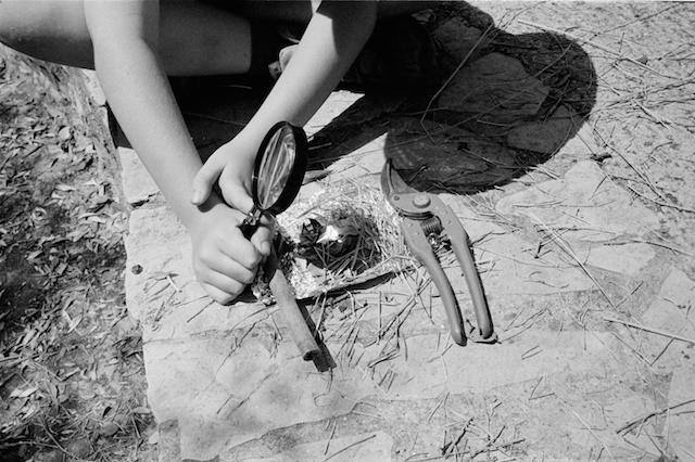 para los que no hayáis usado una leica, hacer fotos con ella es como hacer fuego con una lupa en pleno verano al sol: incomodo lento y no muy fiable.