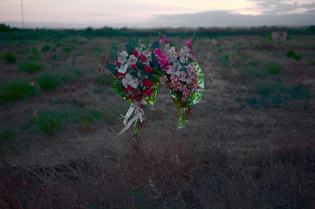 Spain pictures. Horta Nord.  Massamagrell. © Daniel Belenguer