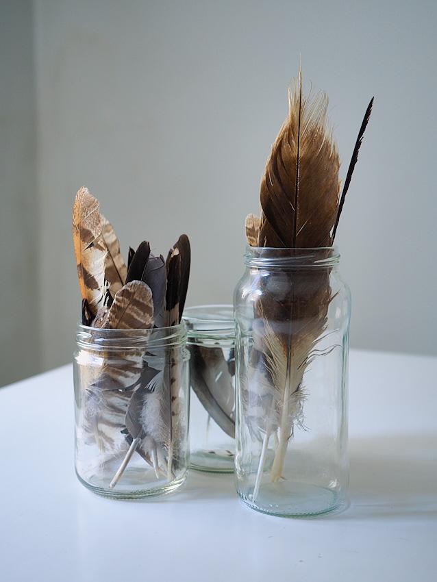 © Daniel Belenguer. Reciclaje.Los botes de alubias y mermelada tienen una segunda vida gracias a algunas plumas encontradas..