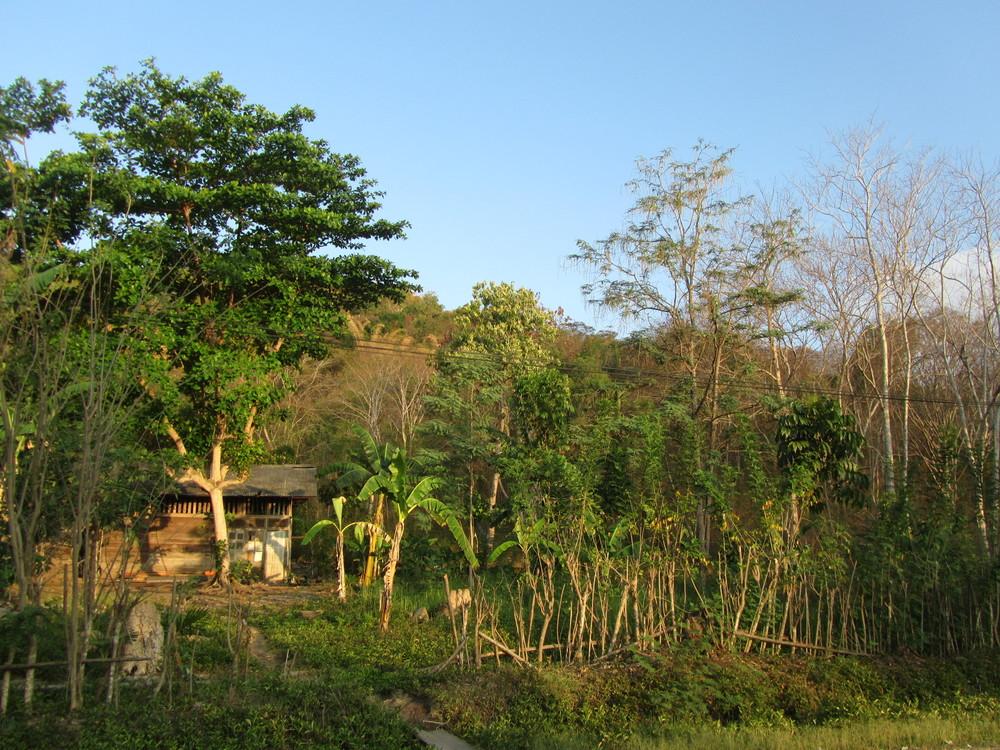 Indonesien-076.JPG