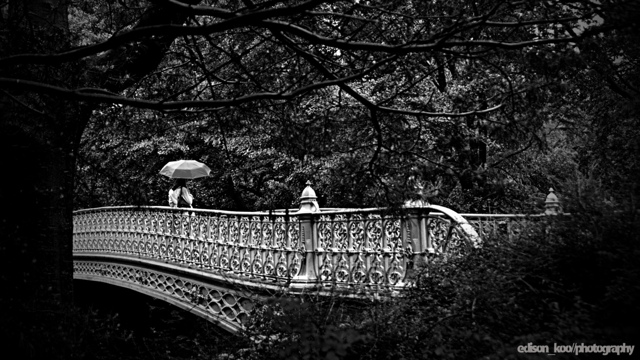 The Red Umbrella Series   I don't convert many photos to monochrome anymore, and not because I don't like it but because good color is harder to pull off and black&white always seemed to be an easier way to make a photo less uninteresting. That being said, the monochrome works better here… Or maybe I'm just sick of the same colors.   I do love 16:9