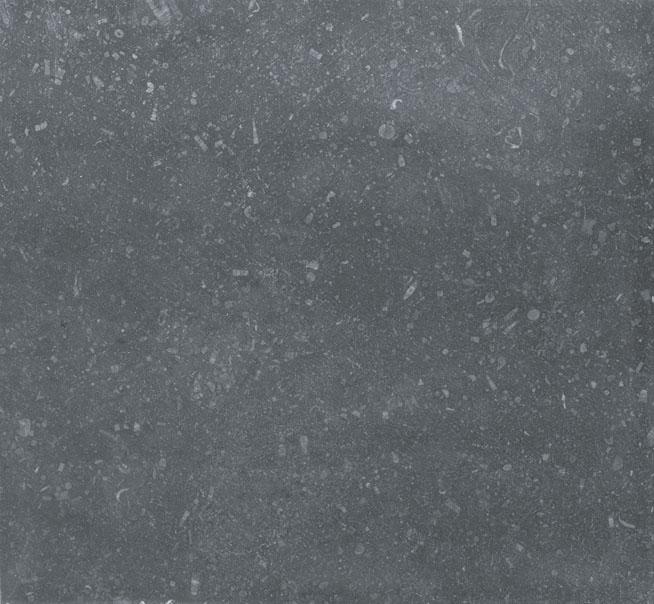 13_Belgium Blue Limestone.jpg