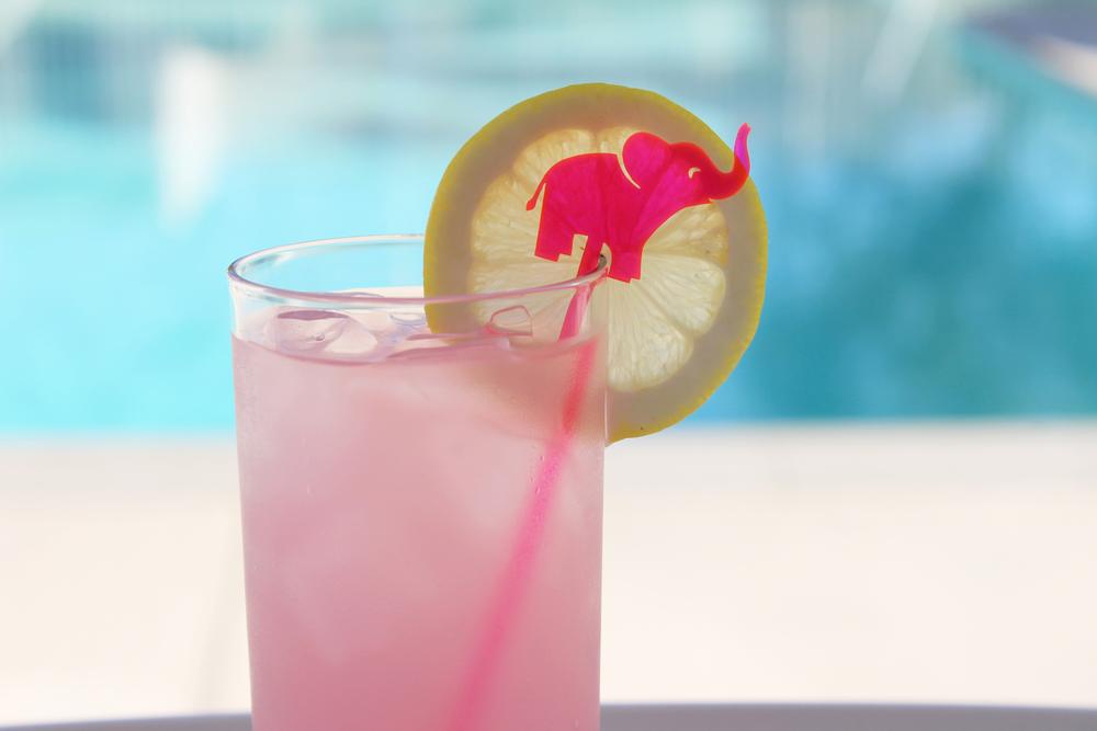 pink elephant.jpg
