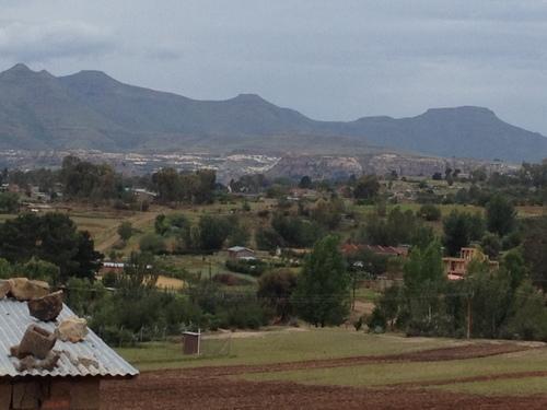 ... typical roma vista ...