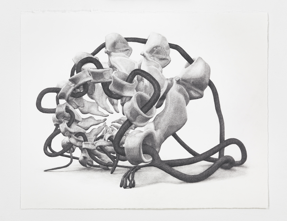 Benjamin Ritter   Untitled 06 , 2012  Graphite on paper   11 × 14 inches