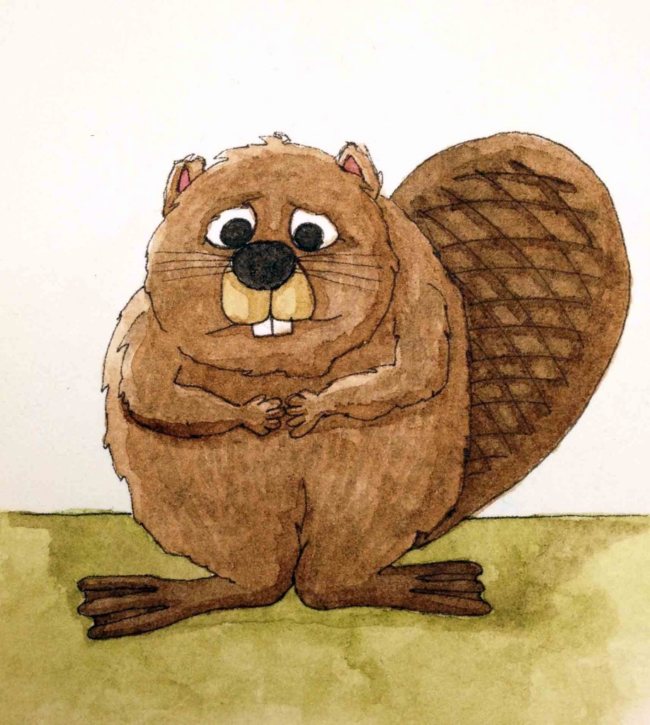 Beaver-918x1024.jpg
