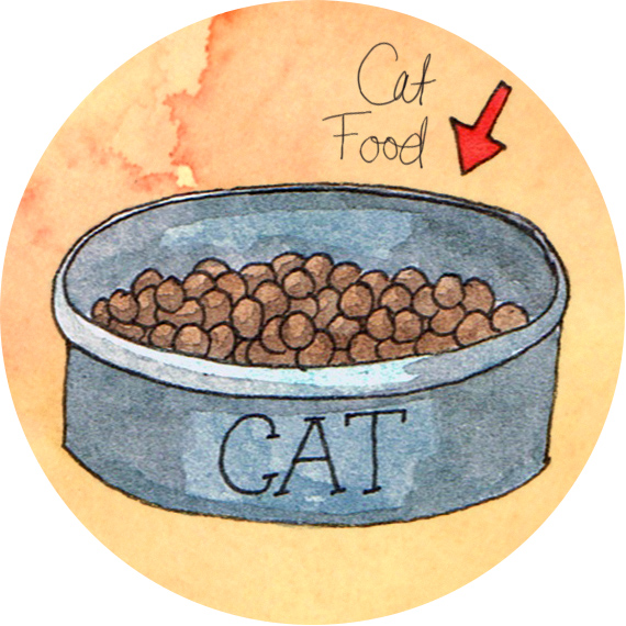 What Finnegan Ate Cat Food Illustration by Amanda Farquharson