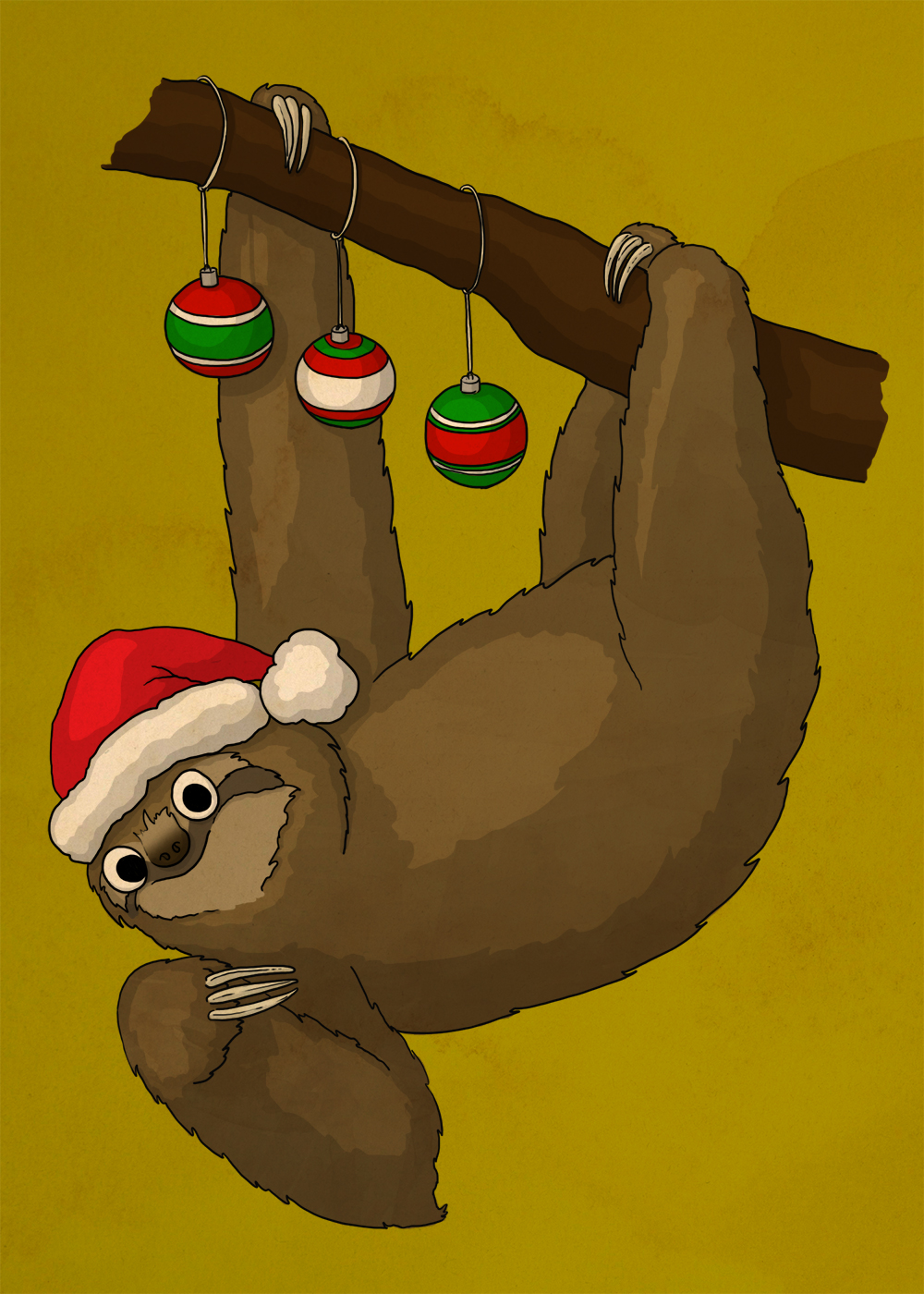 I guess it's hanging upside-down that makes the sloths so happy?