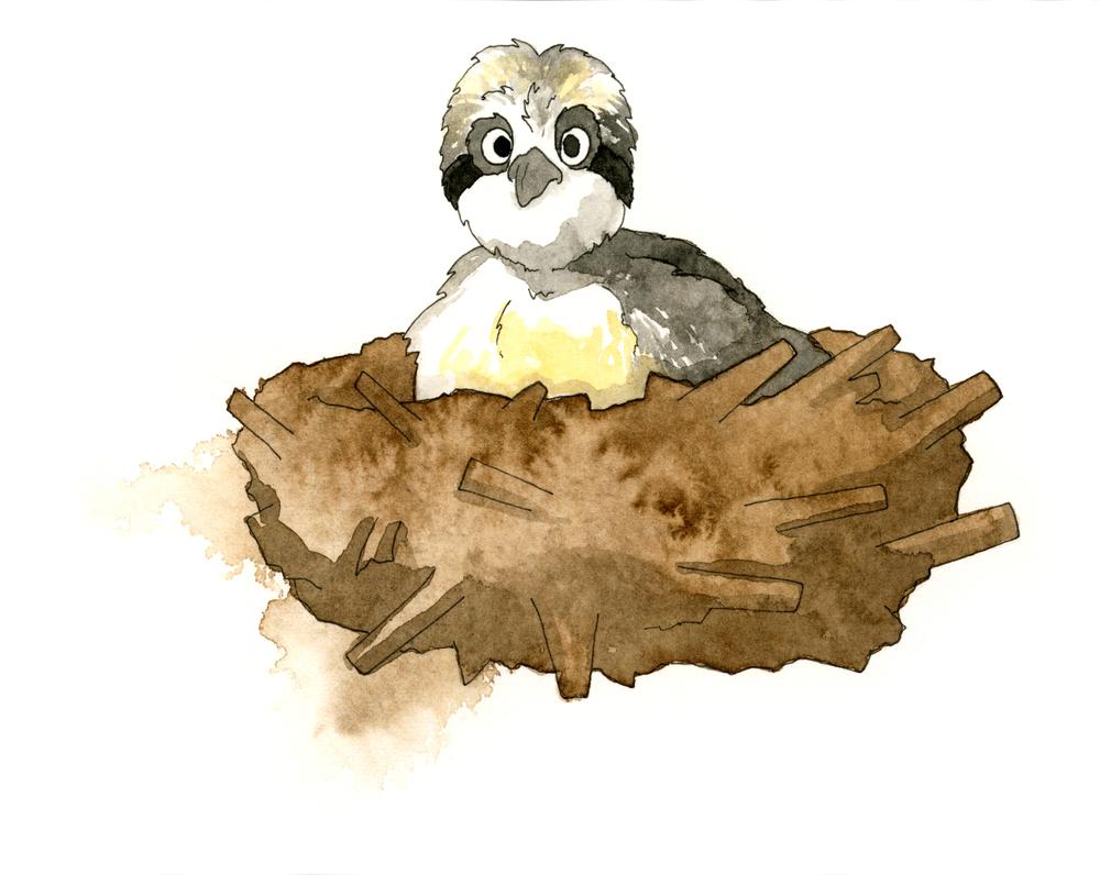 Osprey-Painting.jpg