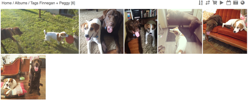 Here is a screenshot of a search for every picture of Finn and his buddy Peggy