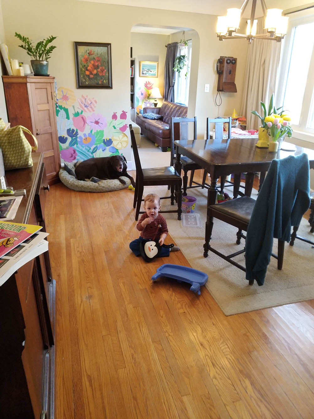 James playing in the dining room while I fold his laundry. He mostly stole his bib from his chair and chewed on it.
