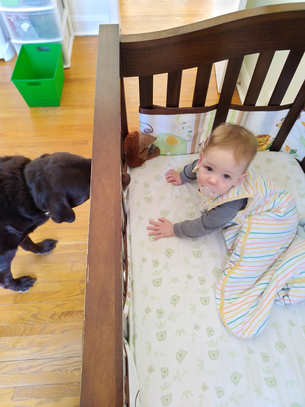 Sleepy baby and curious pup.