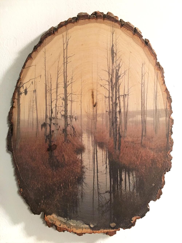 Wood_Smiths Creek.jpg