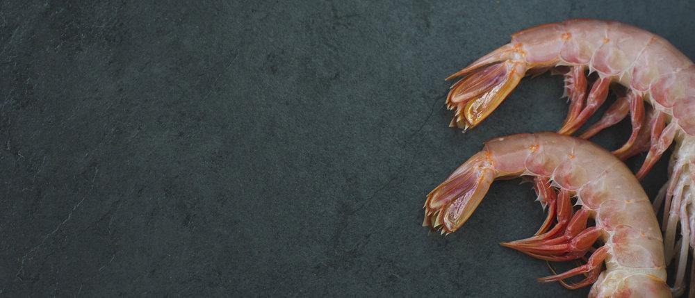 Pescados y Mariscos -