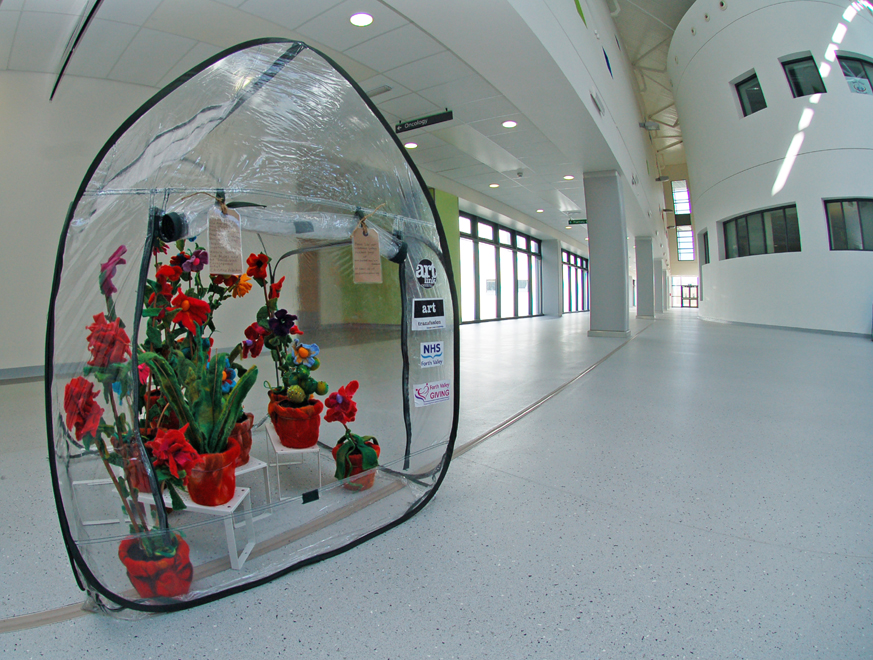 Greenhouses of vibrant work curated from older people in ward settings brought the hospital to life last year.