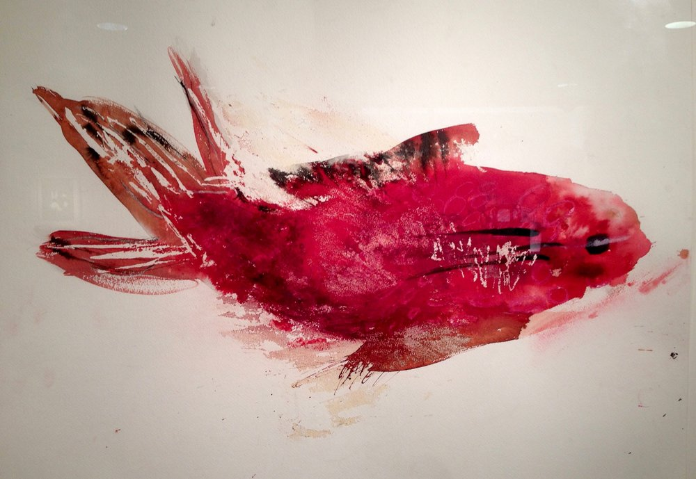 red fish in water colours