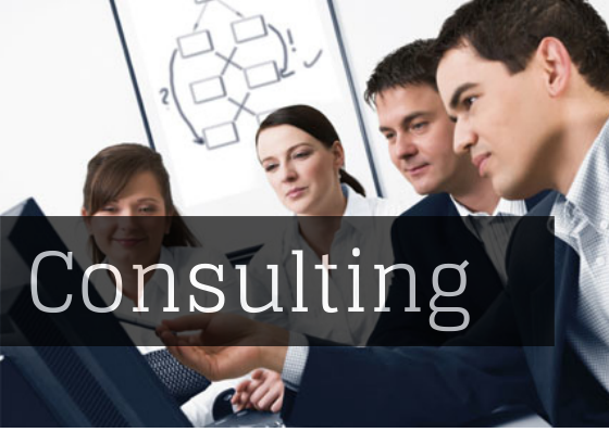 consulting.png