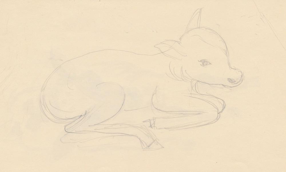 Animals014-2.jpg