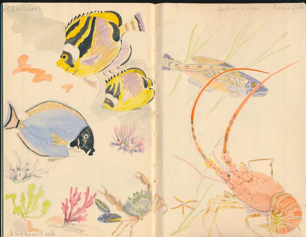 Fish002.jpg
