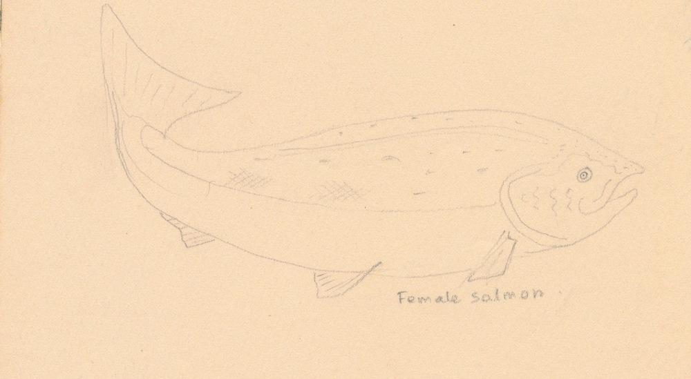 Fish004.jpg