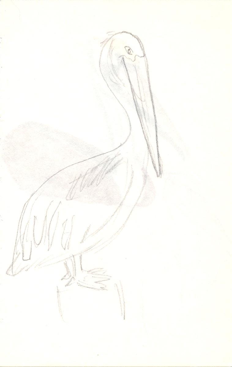 Birds009.jpg
