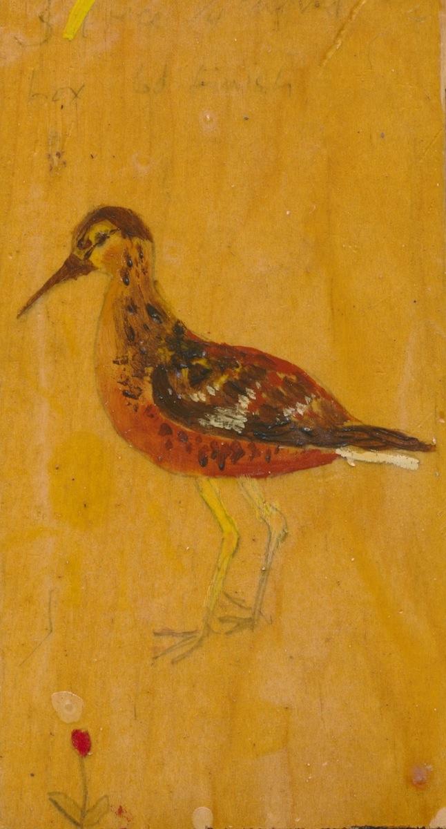 Birds014.jpg