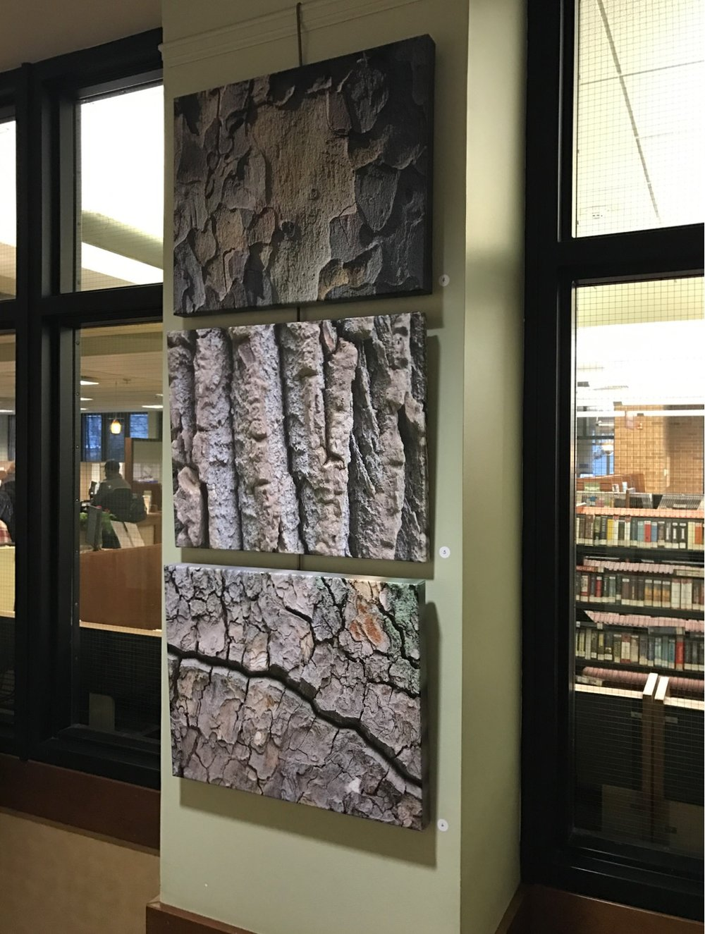 A snapshot of one of the panels in the Saratoga Springs (NY) Library.