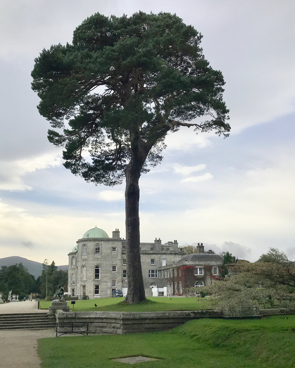 Powerscourt Tree-House - 1.jpg