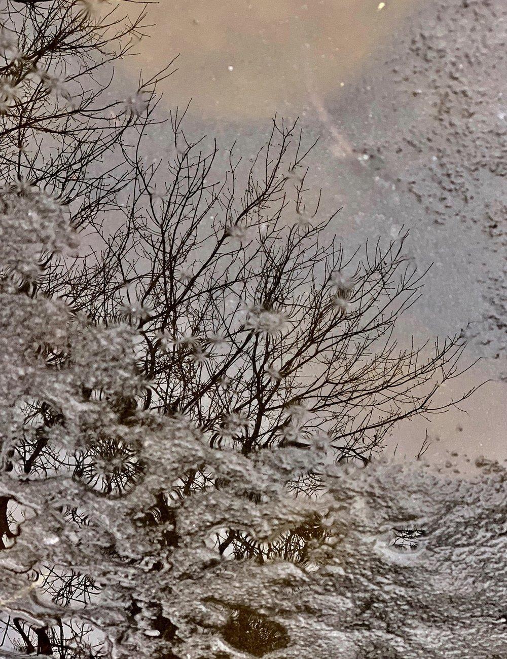Screen Shot 2019-03-11 at 10.39.32 AM.jpg