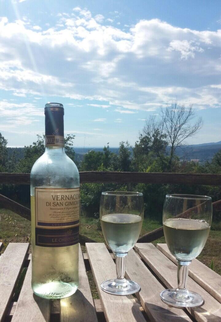 Het uitzicht vanuit ons huisje & een heerlijke lokale witte wijn