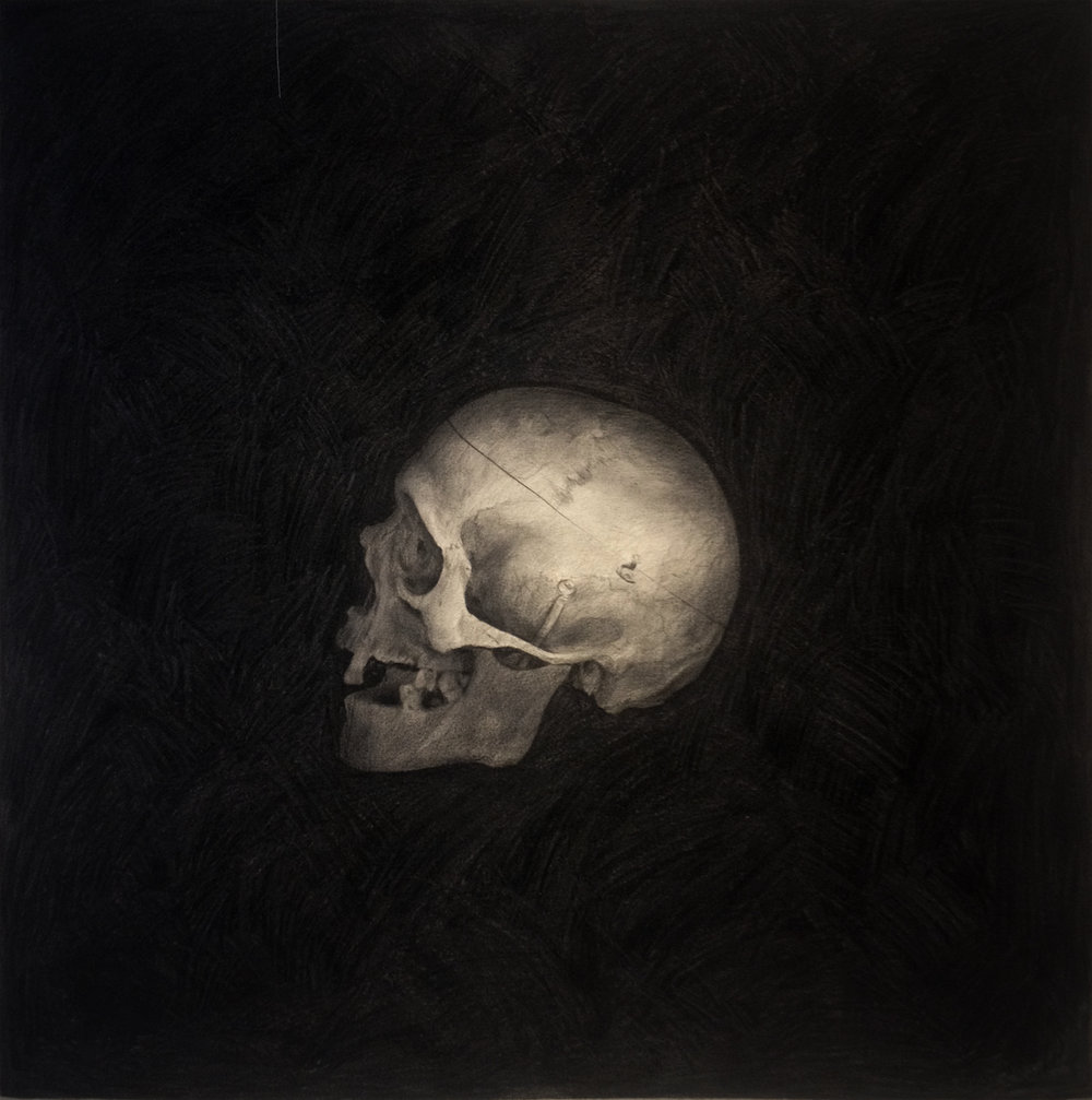 1st Skull - Sergio Barrale-pencil on canvas-40x42in-$1,600.jpg