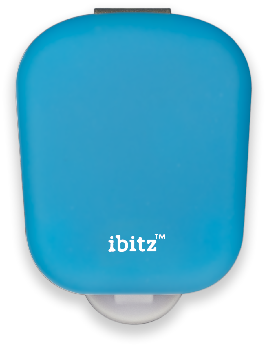 blueberry iBitz