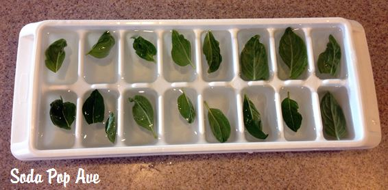 Mint Ice Cubes (1).JPG