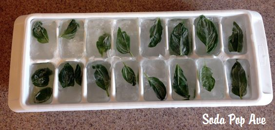 Mint Ice Cubes (3).JPG