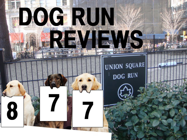 New York's many dog runs reviewed, one by one. This week: Union square.