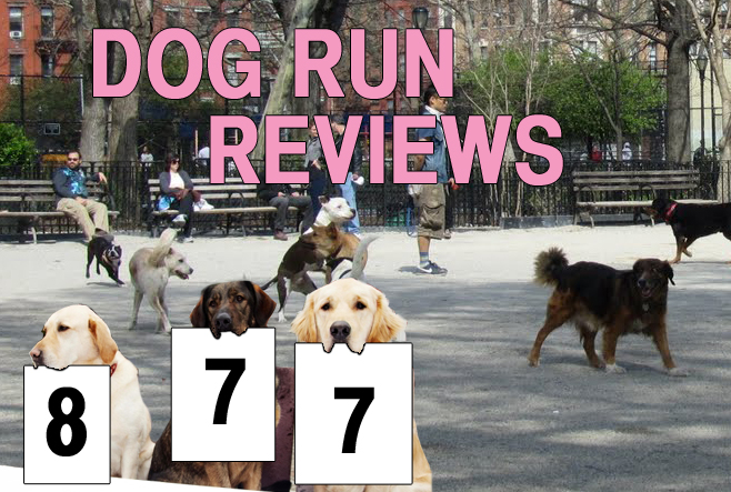 The city's dog runs, reviewed, one gravel pile at a time. This week: Tompkins Square Park.