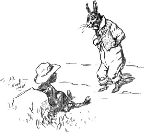 The Br'er Rabbit story (or Br'er Anansi, in Jamaican culture) becomes a central part of the book, but I can't even begin to explain how.