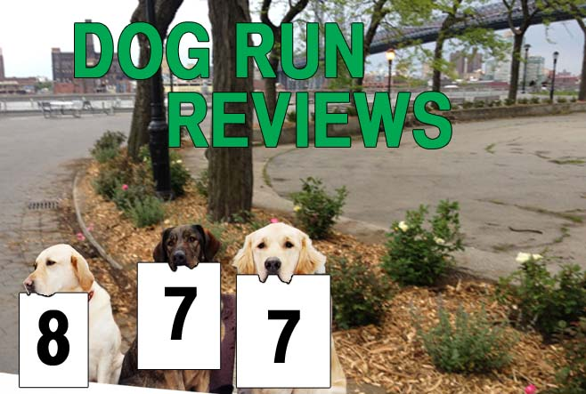 The city's dog runs, reviewed, one gravel pile at a time. This week: East River Park (downtown).