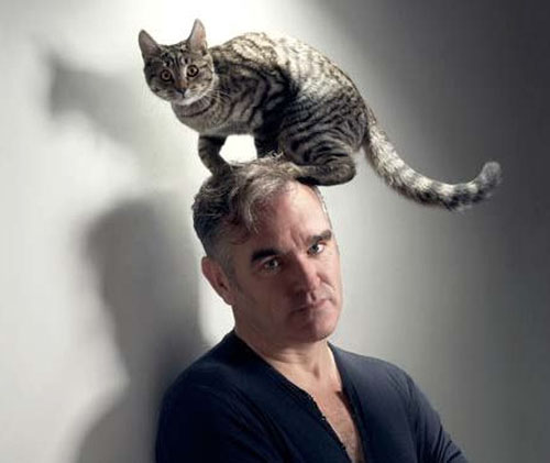 Since Kirkman loves Morrissey and mocking cat ownership, I have an excuse to post this picture.