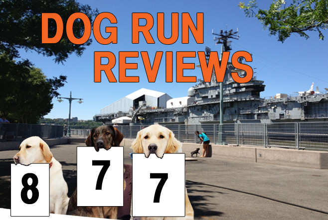 The city's dog runs, reviewed, one gravel pile at a time. This week: Hudson River Park at Pier 84.