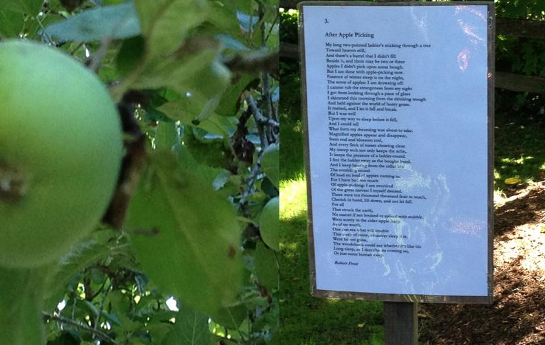 frost poem3.jpg