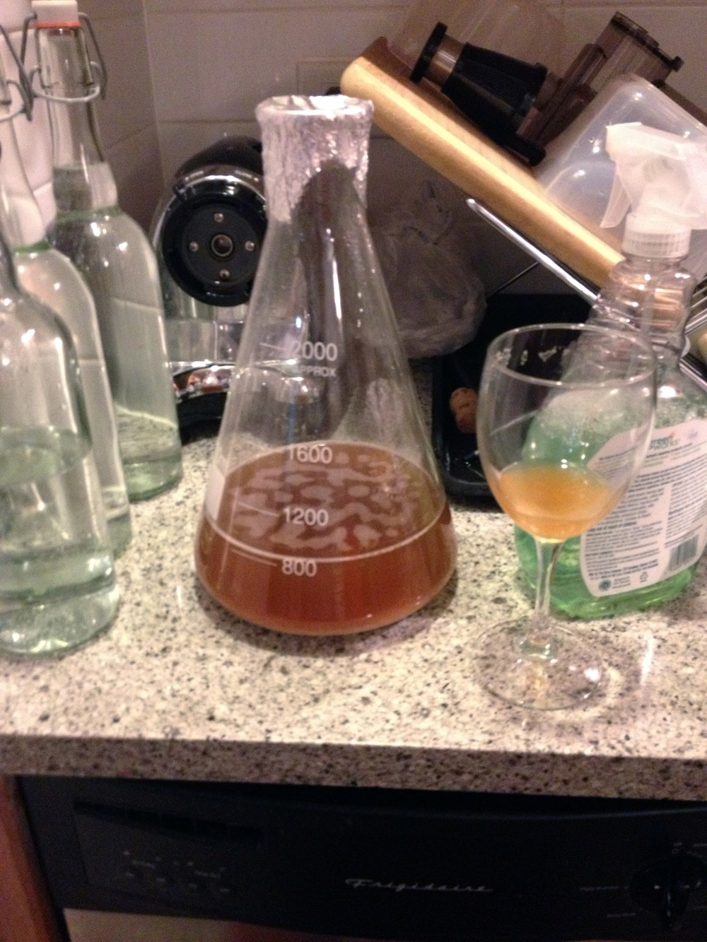 How to Brew Your Own Beer Yeast.jpg