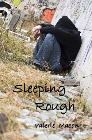Sleeping Rough   by Valerie Macon (via    Old Mountain Press   )