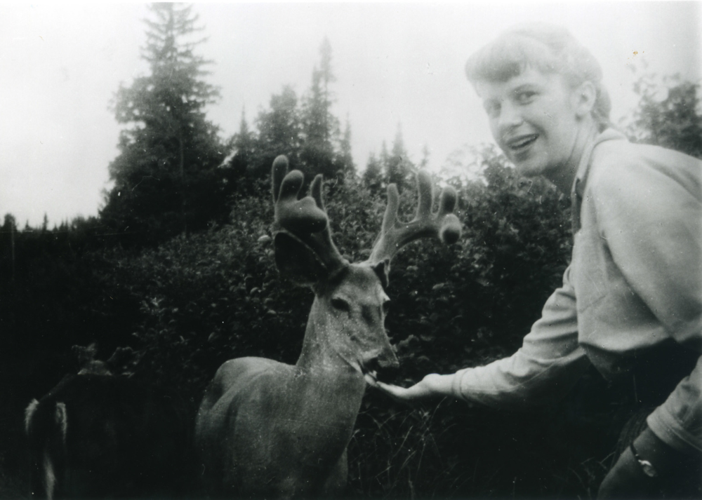 hamlet and sylvia plath Ny times nov 10, 2000 sylvia plath, forever an icon for many people of a certain time and age, the great romantic myths are marilyn monroe and james dean.