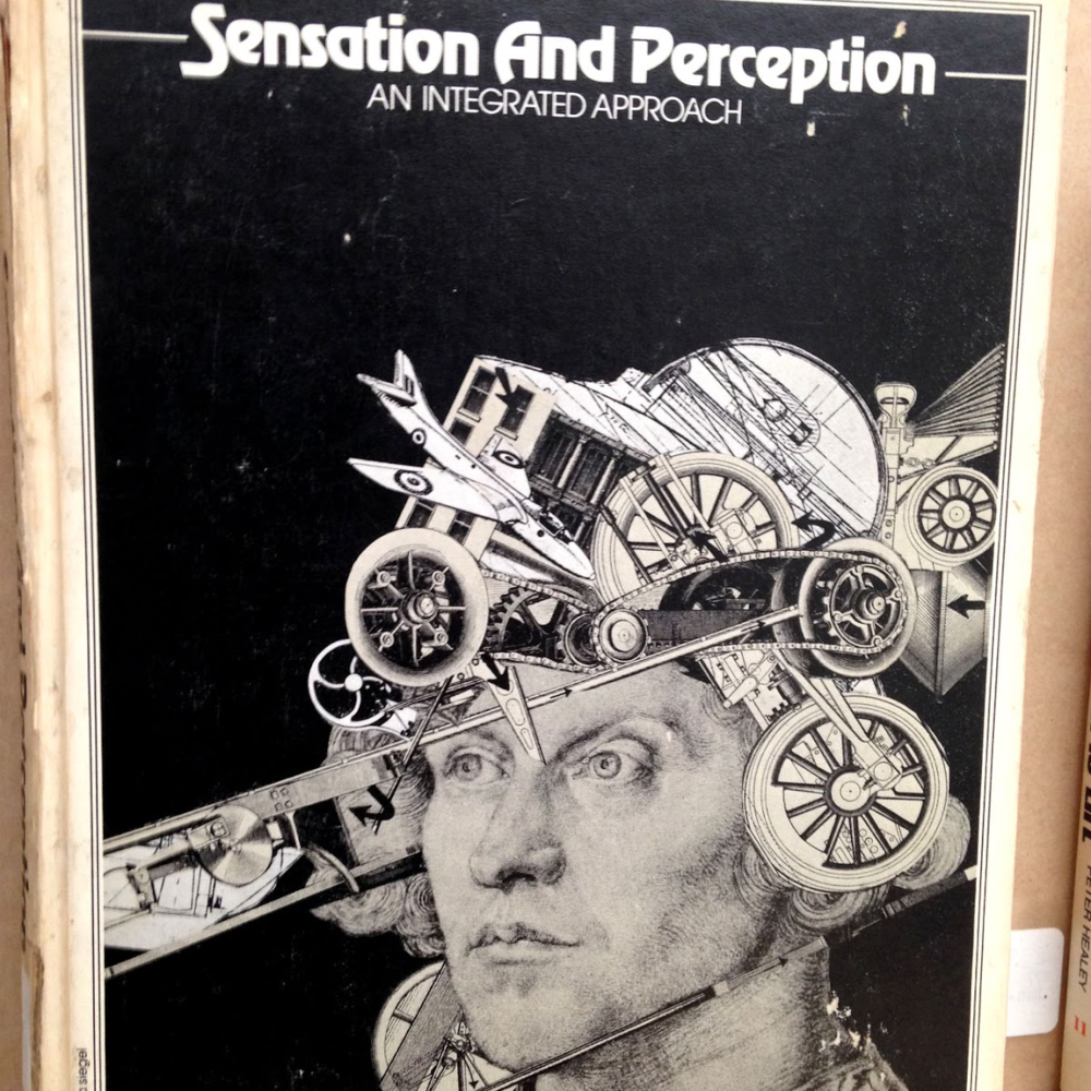 Sensation and Perception by H. R. Schiffman