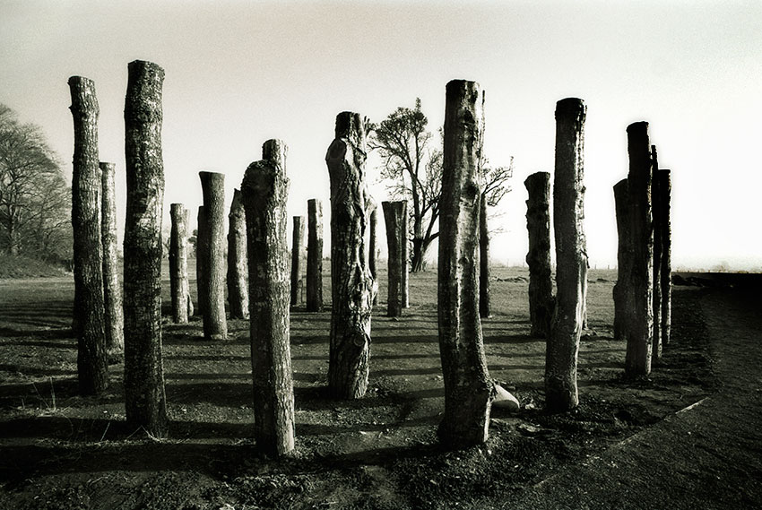 Pillars_of_Knowth.jpg