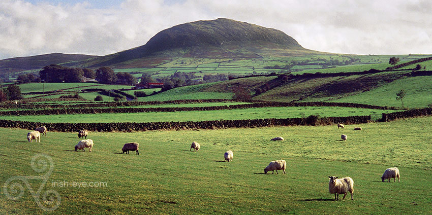 Slemish Mountain, co. Antrim