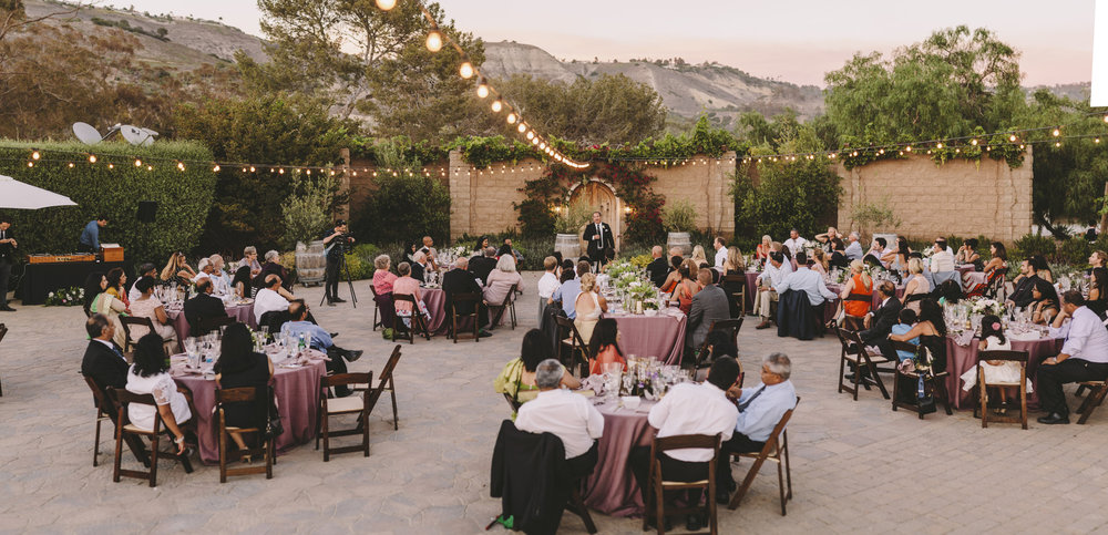 southern california wedding photographer brandon werth rancho palos verdes reception outdoor vineyard
