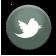 socials-twit.png